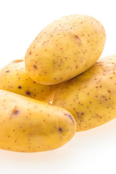 Potato vegetables isolated on white background